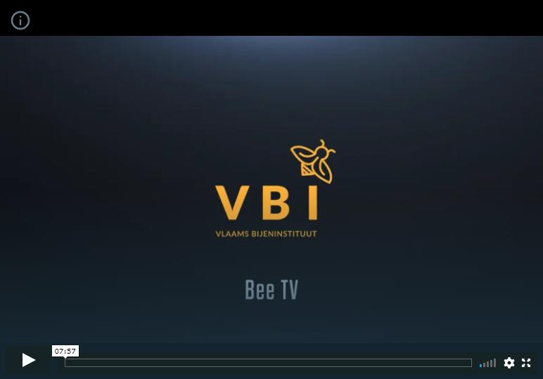 het VBI lanceert Bee TV